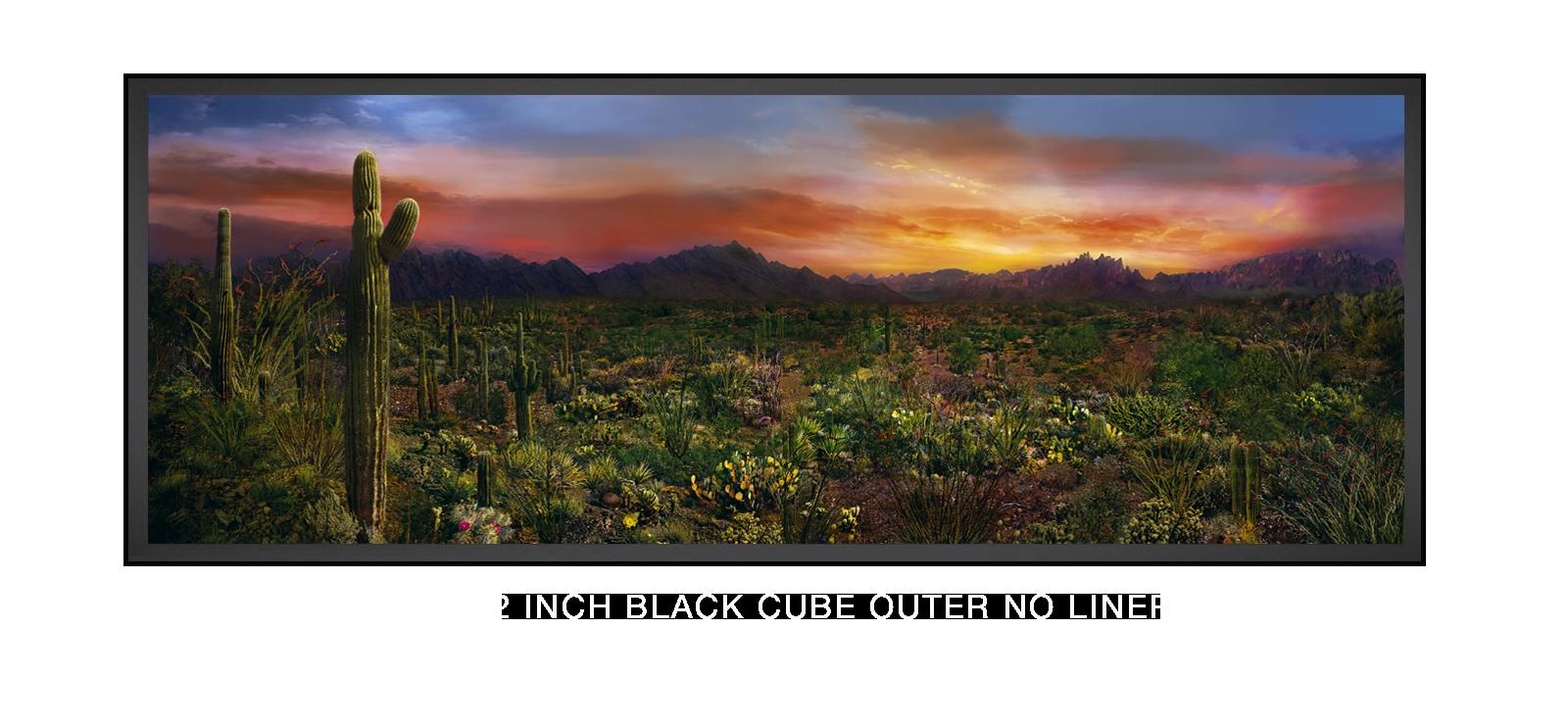 10EDEN VERNALIS 2 Inch Black Cube Outer w_No Liner T