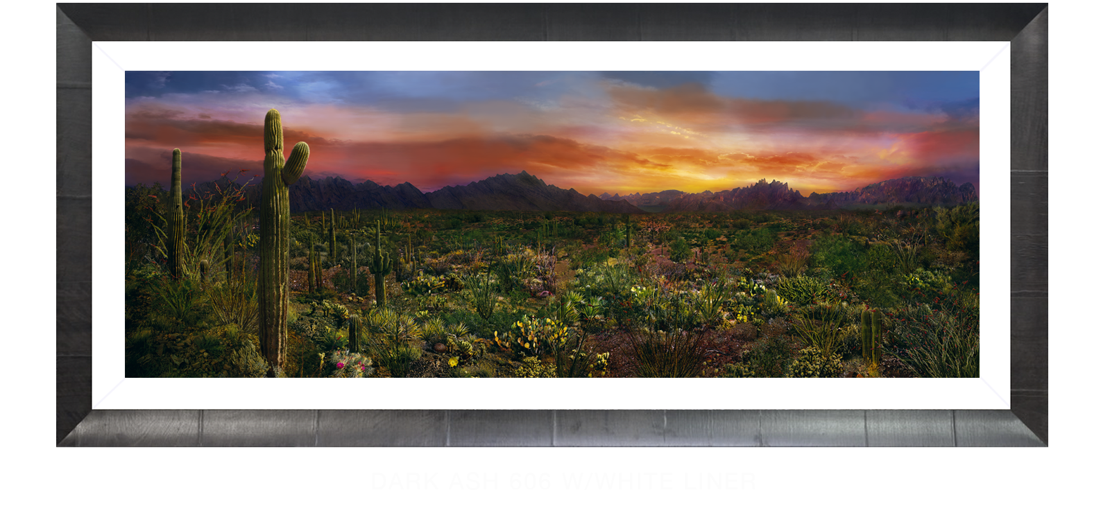 18EDEN VERNALIS Dark Ash 606 w_Wht Liner T