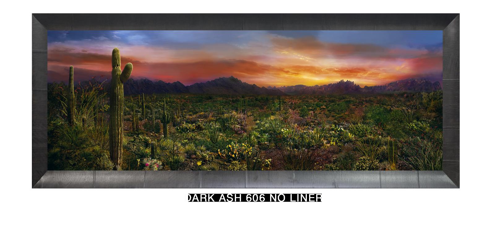 19EDEN VERNALIS Dark Ash 606 w_No Liner T
