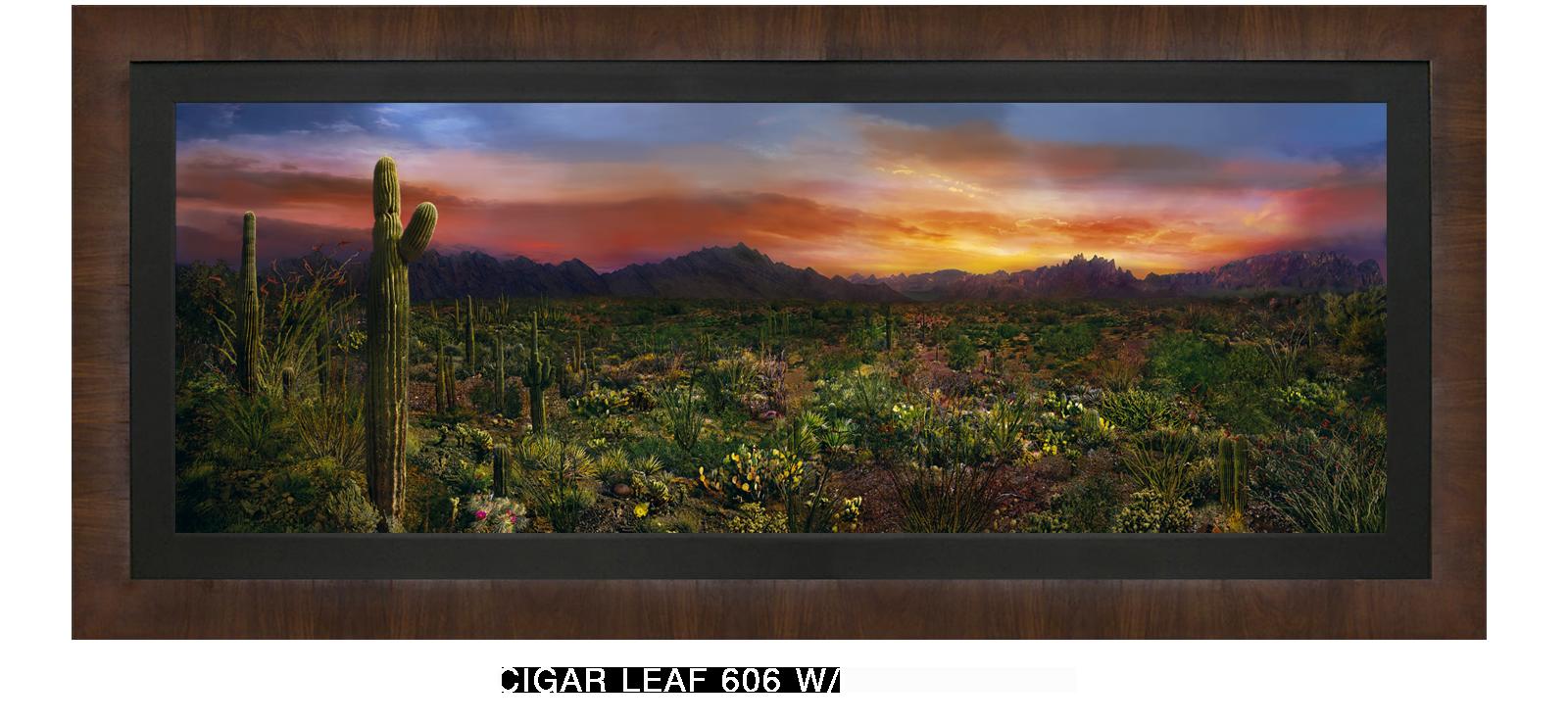 20EDEN VERNALIS Cigar Leaf 606 w_Blk Liner T2