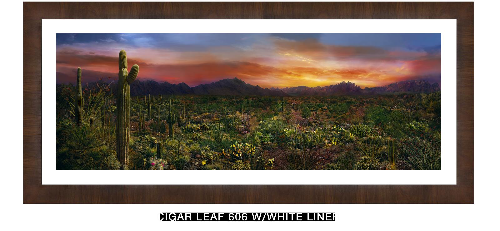 21EDEN VERNALIS Cigar Leaf 606 w_Wht Liner T