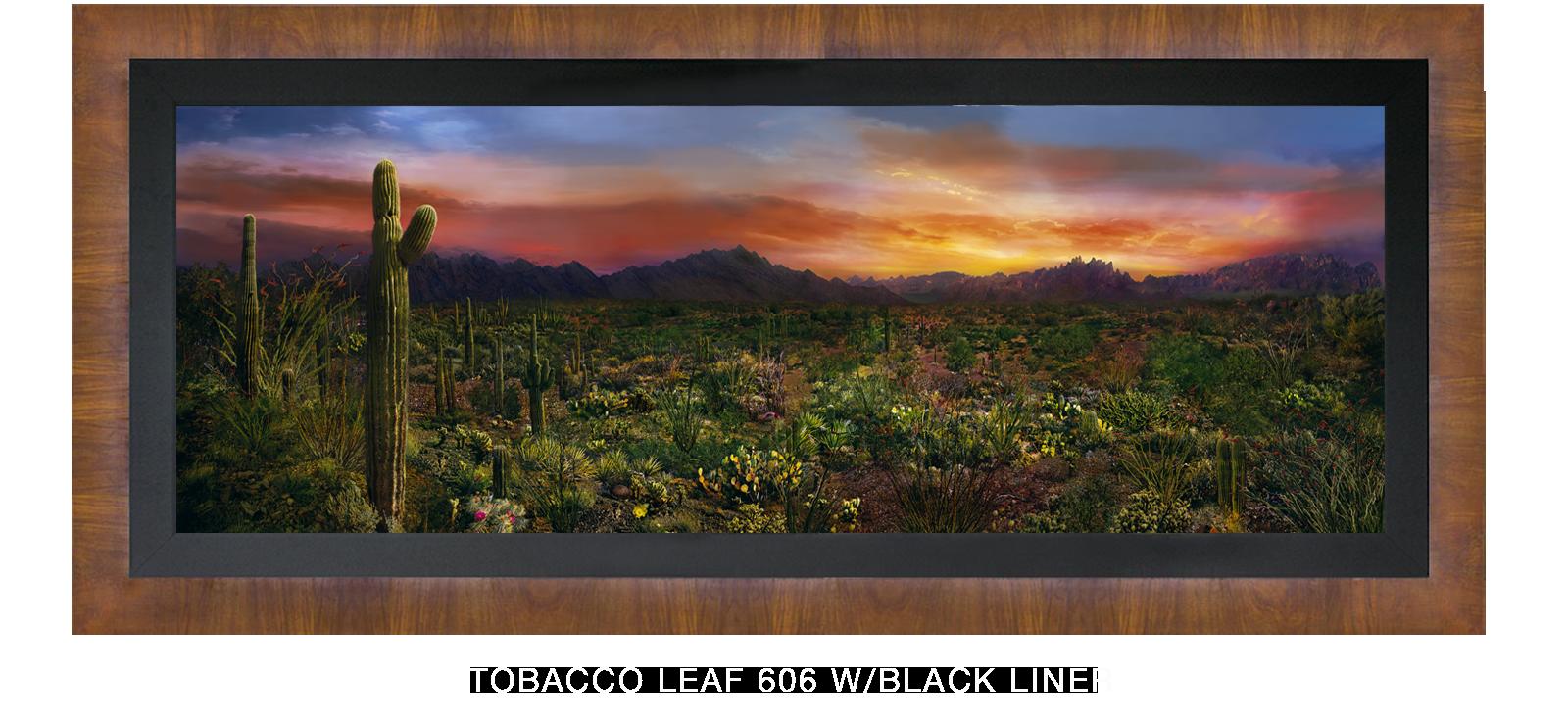 23EDEN VERNALIS Tobacco Leaf 606 w_Blk Liner T2