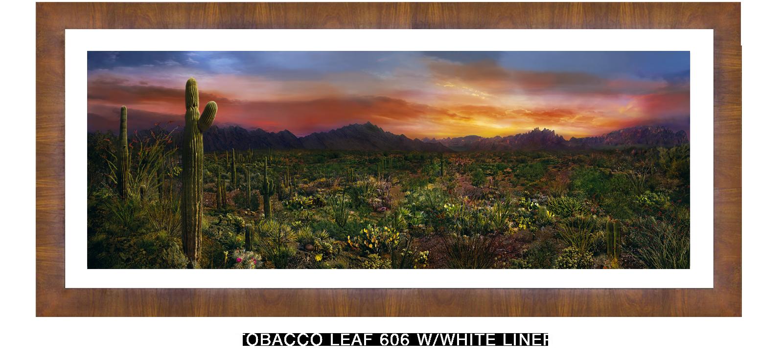 24EDEN VERNALIS Tobacco Leaf 606 w_Wht Liner T