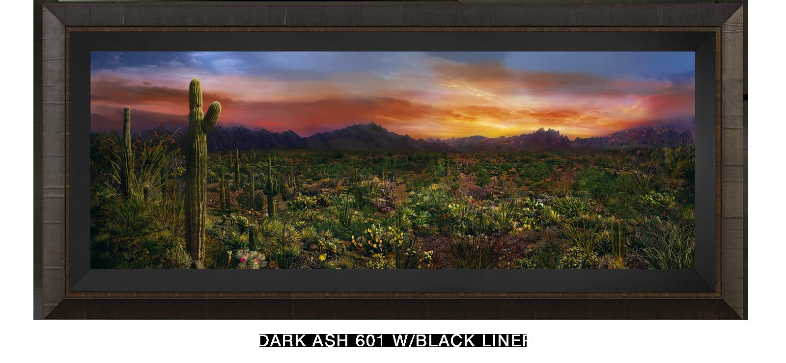 26EDEN VERNALIS Dark Ash 601 w_Blk Liner T