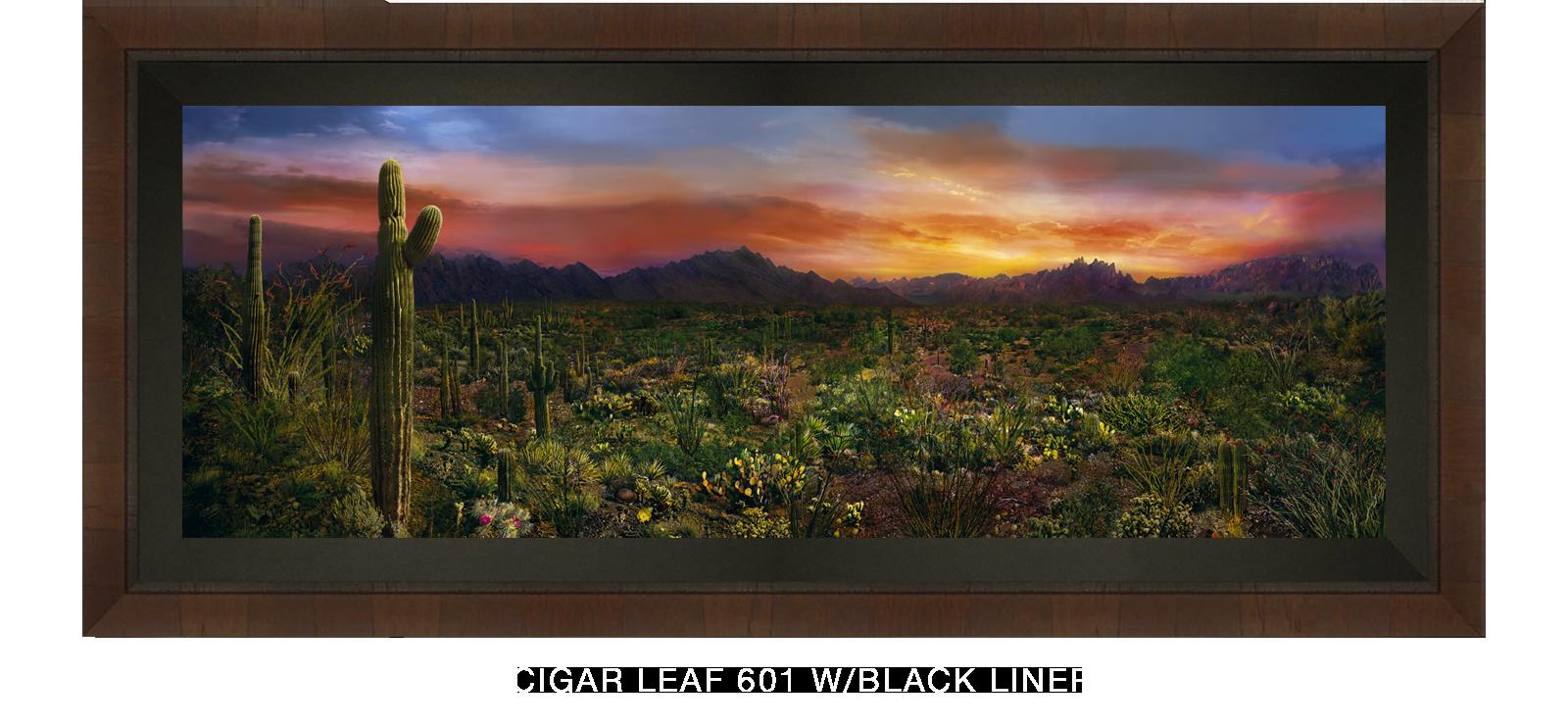 29EDEN VERNALIS Cigar Leaf 601 w_Blk Liner T