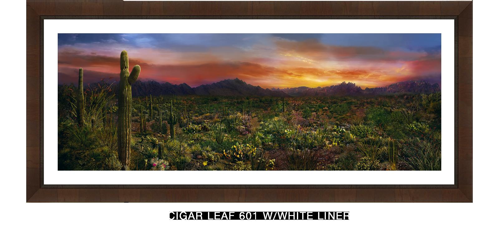 30EDEN VERNALIS Cigar Leaf 601 w_Wht Liner T