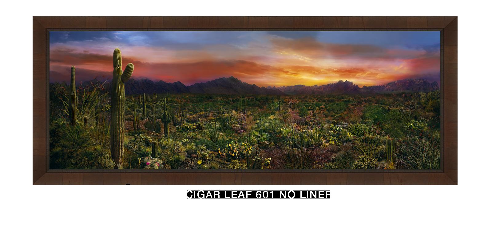 31EDEN VERNALIS Cigar Leaf 601 w_No Liner T