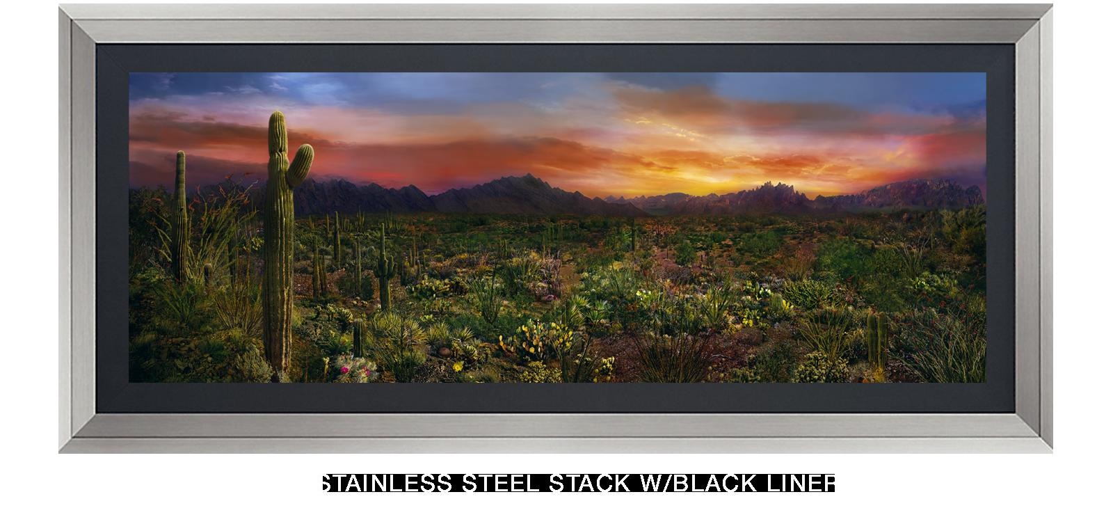 5EDEN VERNALIS Stainless Steel Stack w_Blk Liner T